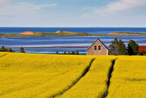 *大自然を求めて (C)Tourism PEI / Paul Baglole