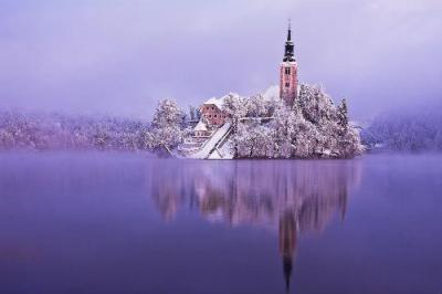 アルプスの瞳【ブレッド湖】(www.slovenia.info, photo:Bled in white - #F000794)