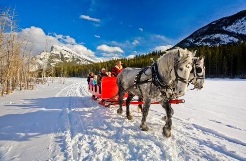 *冬のバンフ (C)Banff & Lake Louise Tourism