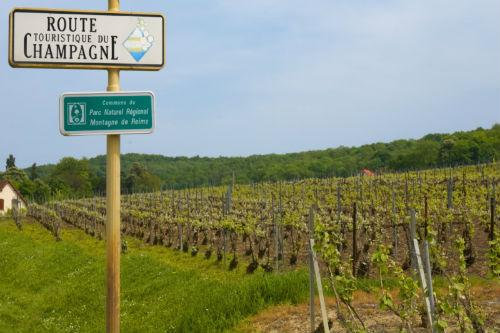 CHAMPAGNE ARDENNEイメージ(C)Atout France-Michel Angot