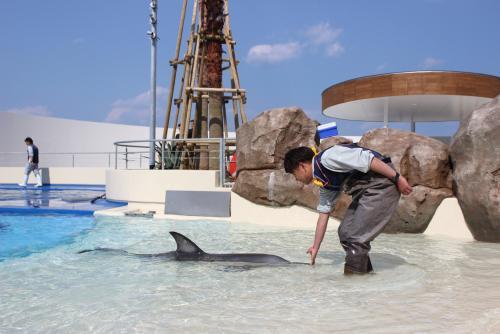 【大分】大分マリーンパレス水族館「うみたまご」 (C)ツーリズムおおいた