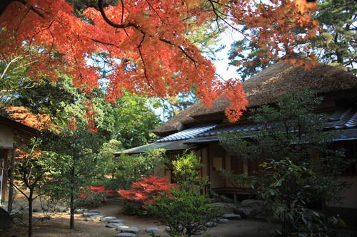 栗林公園(紅葉)(イメージ) _(C) (公社)香川県観光協会