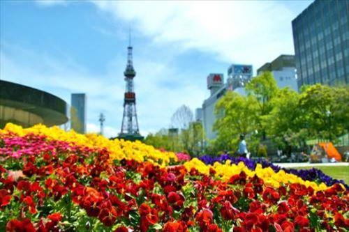 【札幌】大通り公園(イメージ)