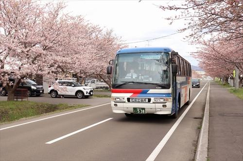 【函館】松前まで移動に便利な函館バス