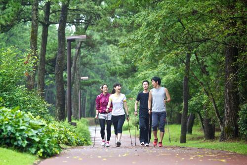 森林に囲まれた、美しい自然のなかでウォーキング!「ノルディックウォーキング」 (C)宮崎県観光協会